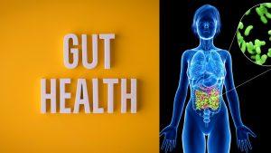 Gut Bacteria - Nutrition Essentials