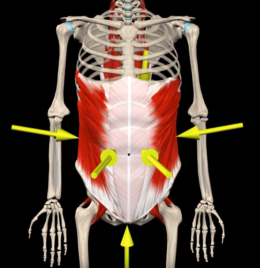 Abdominal Bracing - Spinal Loosening Exercises